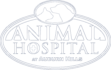 Animal Hospital at Auburn Hills: Share the Love